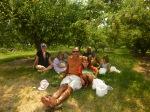 Chelan Orchard