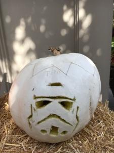 Gia's Stormtrooper